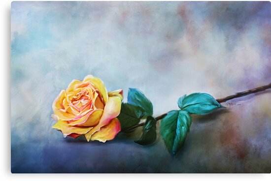 Yellow Rose & Rain Drops by Renee Dawson