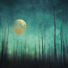Moon Silence by Priska Wettstein