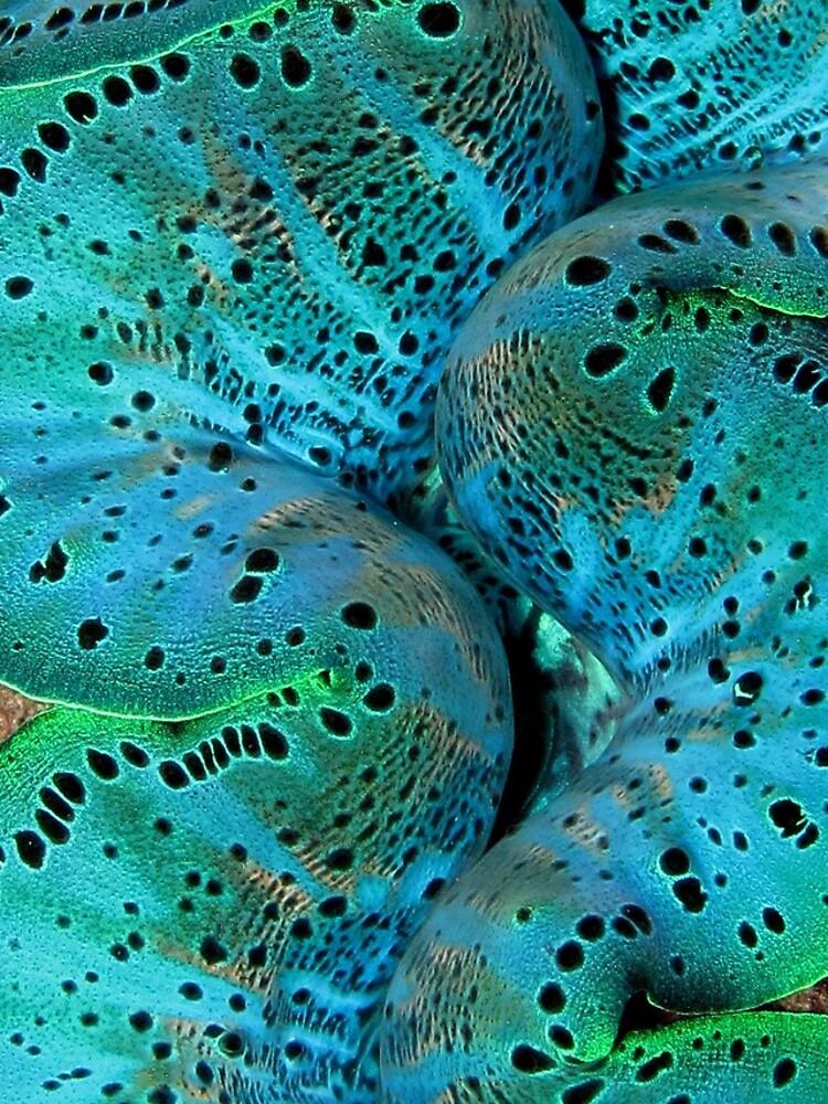 Sinusoidal in Blue by neoniphon