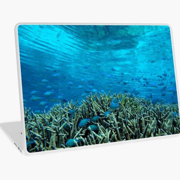 Panavara channel Laptop Skin
