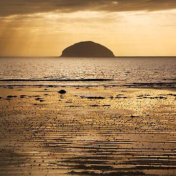 Golden Island by Sumosan