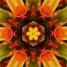 Orange Rose Mandala  by DesJardins