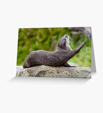 Morning exercise Greeting Card