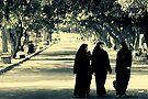 Walkin' Talkin' by Vikram Franklin