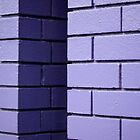 Purple Bricks by TeAnne