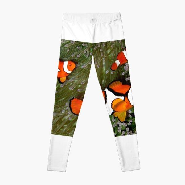Nemo trio Leggings