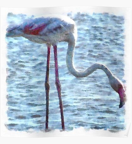 Balance of Nature Flamingo Watercolor Poster