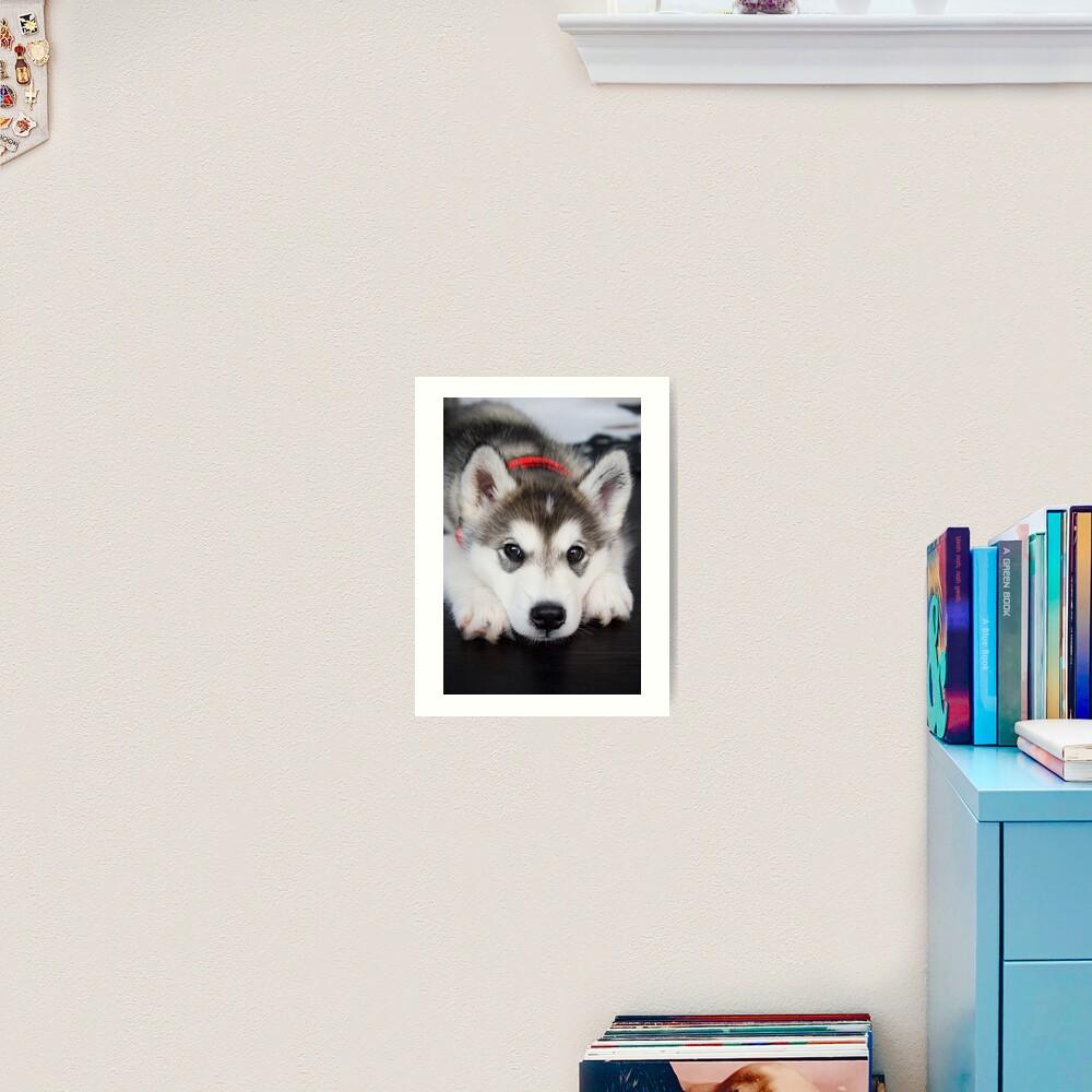 Look how cute I am Art Print