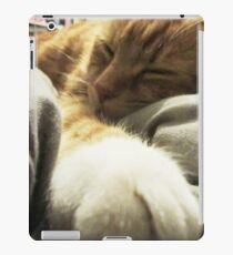 Cat sleeping iPad Case/Skin