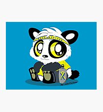 Boston Strong Panda Photographic Print