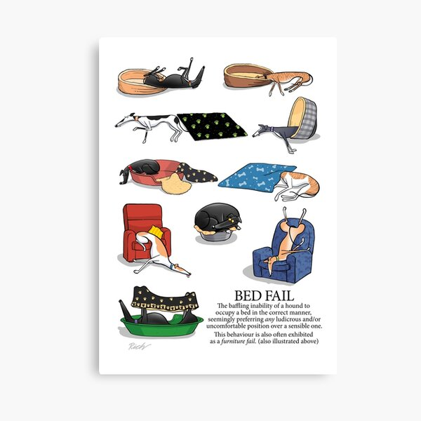 Greyhound Glossary: Bed Fail. A Redbubble exclusive design Canvas Print