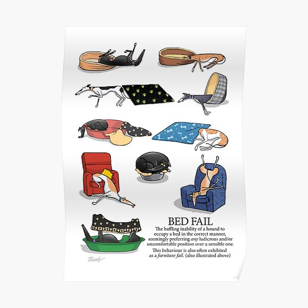 Greyhound Glossary: Bed Fail. A Redbubble exclusive design Poster