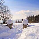 Winter's scene by Eugenio