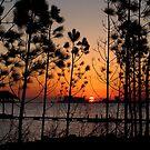 Masked Sunset by Jonicool