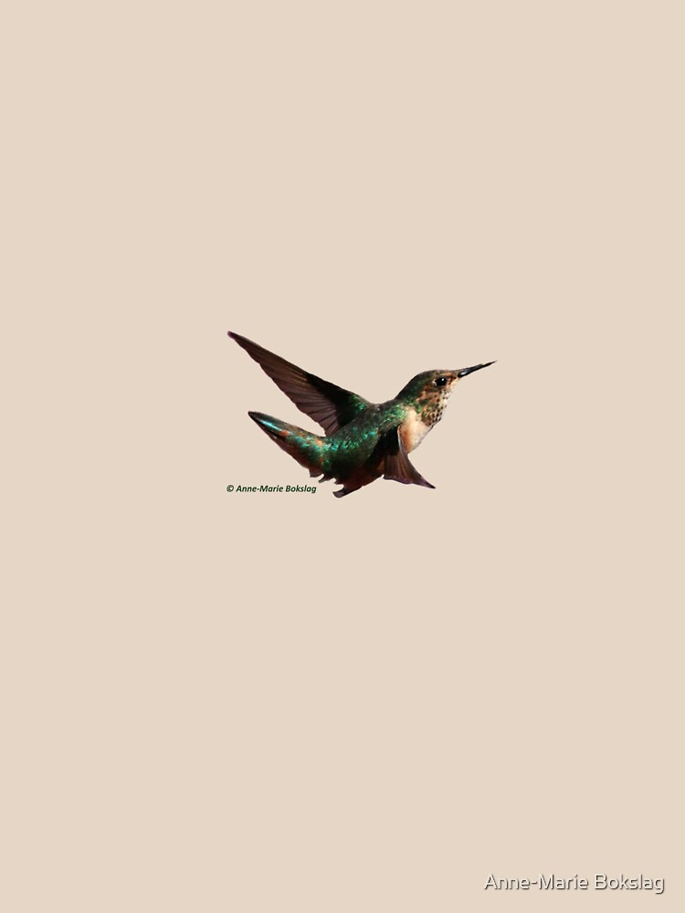 Hummingbird by amb1946