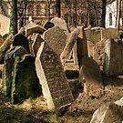 Tombstones by Anne-Marie Bokslag