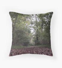 Fallen Leaves Trail Walk Throw Pillow
