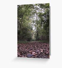 Fallen Leaves Trail Walk Greeting Card