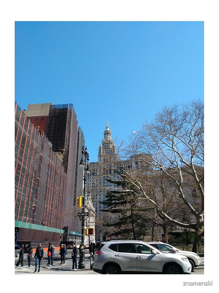 New York City, New York, Brooklyn, Manhattan, building, house, skyscraper by znamenski