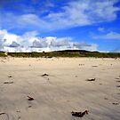 Garrynamonie Beach by Alexander Mcrobbie-Munro