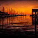 Sail Away by Judy Vincent