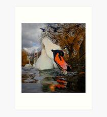 Swan & Birds Art Print