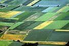 Field Art by Kasia-D