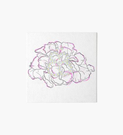 Schmetterlingsblume Galeriedruck