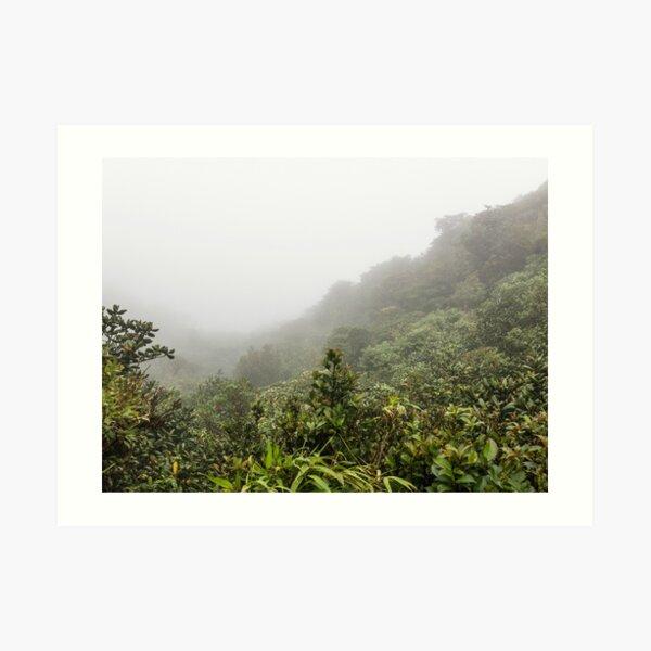 Mountain valley hidden by the clouds in the mist, Monteverde, Ecuador Art Print