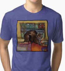 The Leisurely Cat Tri-blend T-Shirt