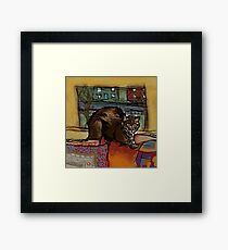The Leisurely Cat Framed Print
