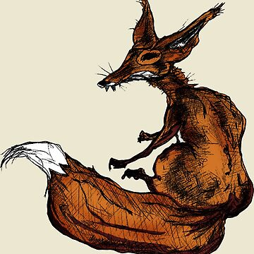 fox by boxspring