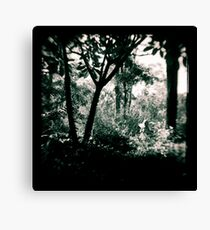 The Surreptitious Pixie Canvas Print