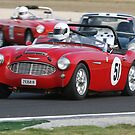 Austin Healey by zoompix