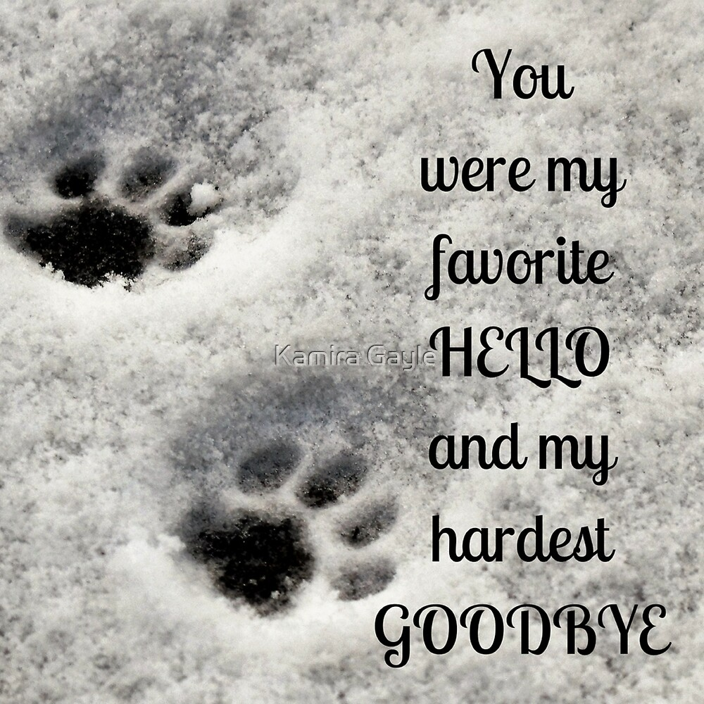 You were my favorite hello and my hardest goodbye by Kamira Gayle