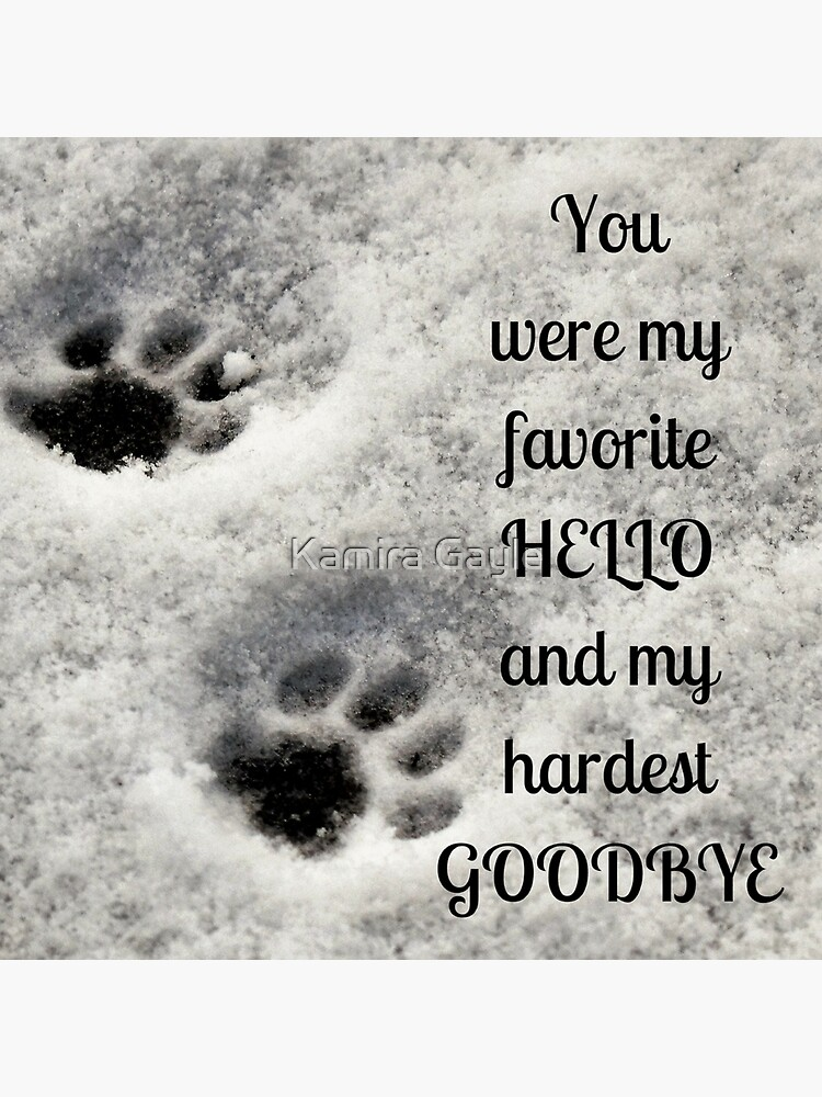 You were my favorite hello and my hardest goodbye by Impurrfectlife