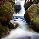 Silken Waters by Travis Easton