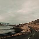 Iceland Road Scenic Landscape by Leah Flores