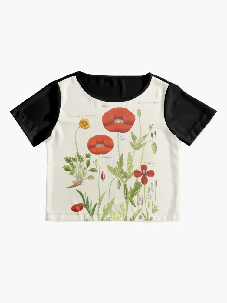 Alternate view of Botanical illustration: Poppy by David Dietrich – State Library Victoria Chiffon Top