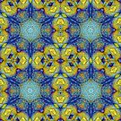 Glowing Star Mandala by DesJardins