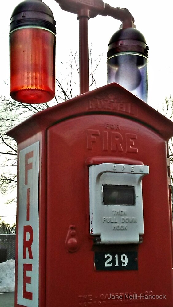 Unique Fire Alarm Pull Box found in Woodland Park, NJ, USA by Jane Neill-Hancock