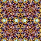 Adding Color To Life Mandala by DesJardins