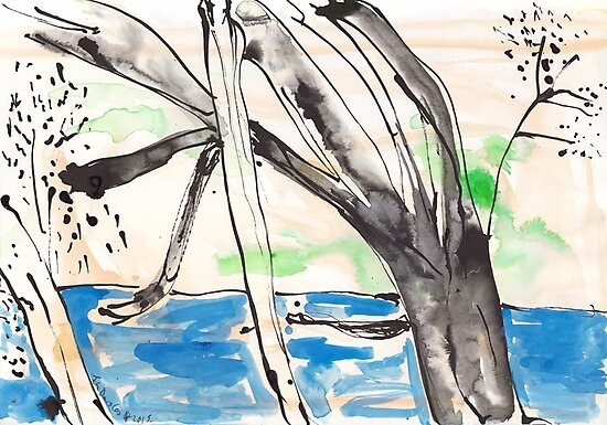 Ross River Rain Tree by John Douglas