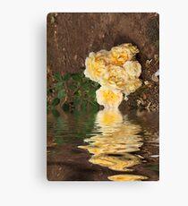 Fallen Roses Canvas Print