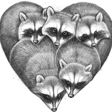Heart from raccoons by NikKor