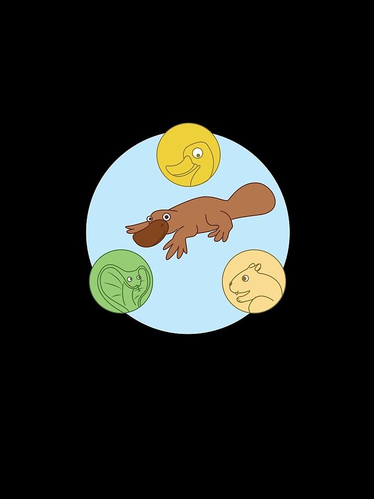 Platypus Venn Diagram Graphic T Shirt By Kieranight Redbubble