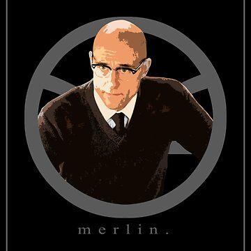 Merlin. by AustralianSpy