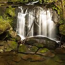 Whatcom Falls by Jim Stiles
