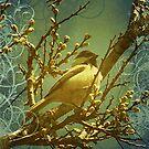 Black-Capped Chickadee by Glenna Walker