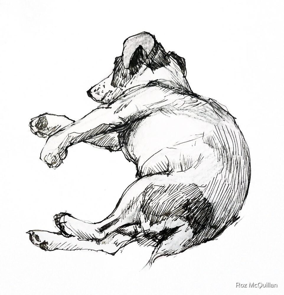 Richard's dog sleeping by Roz McQuillan